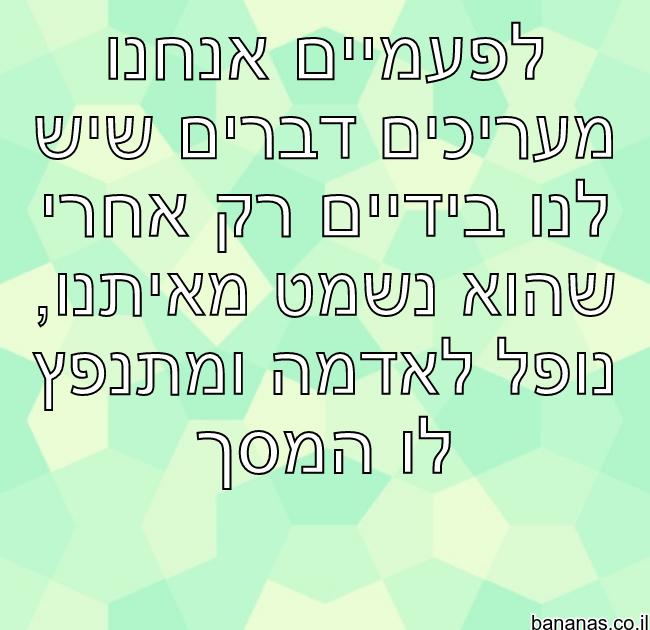 משפט חכמה